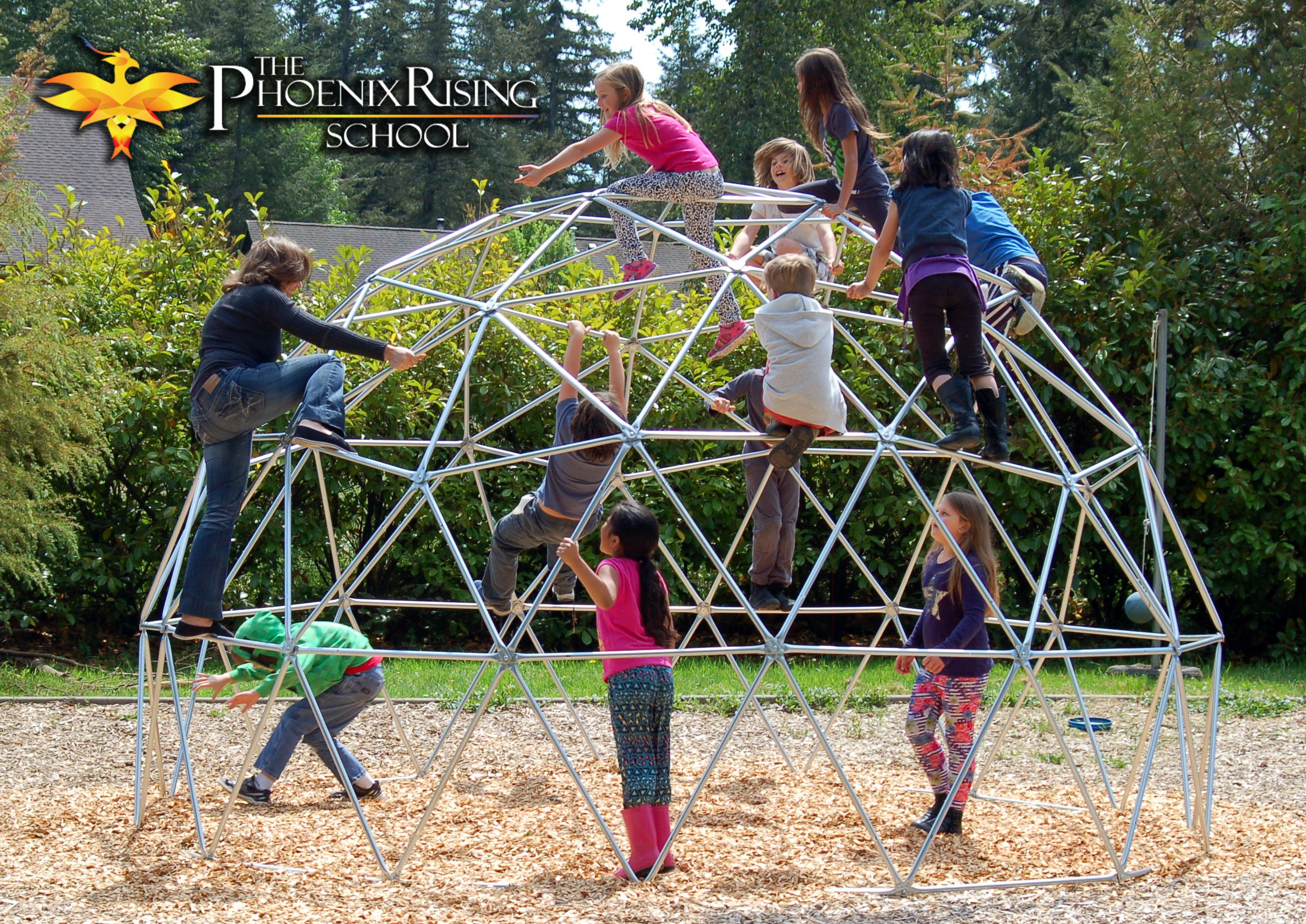 Pacific Domes Gallery Playground Domes Climbing Dome