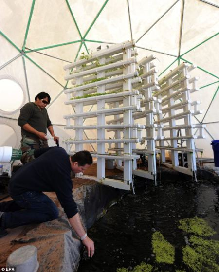 geodesic greenhouse for sale, greenhouse domes, geodesic greenhouses, grow domes