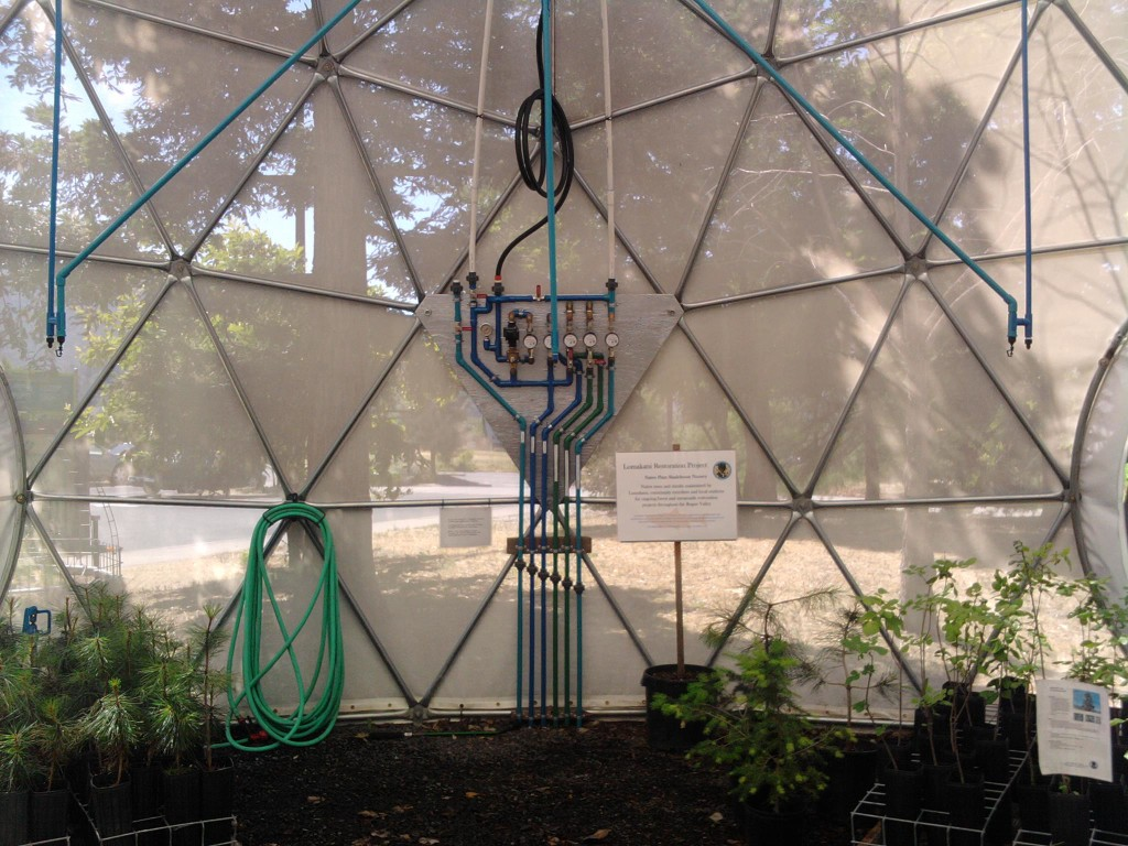 Science-Works Greenhouse Dome
