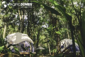 Pacific Domes - Faith Glamping Domes Resort