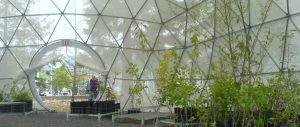 Pacific Domes - Greenhouse Dome - Oregon