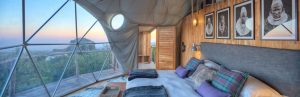 Design Your Perfect Dwell Dome: Part 1