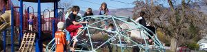 Superior Geodome Climbers for Playgrounds: Commercial Geodome Climbers by Pacific Domes