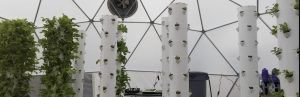 Easy-up Aquaponic Domes - YES, YES, YES! –  Pacific Domes… Leading the Future of Urban Farming