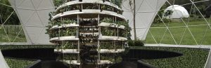The Urban Garden DIY Grow Dome: Building a Sustainable Lifeboat