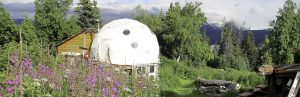 Urban Placemaking: Ecoliving Dwell Dome Shelters