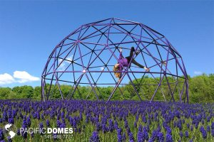 purple-climbing-dome