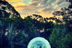 30-shelter-dome