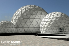 epcot_domes4