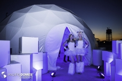 Icon-Ice-Bar-Pacific-Domes