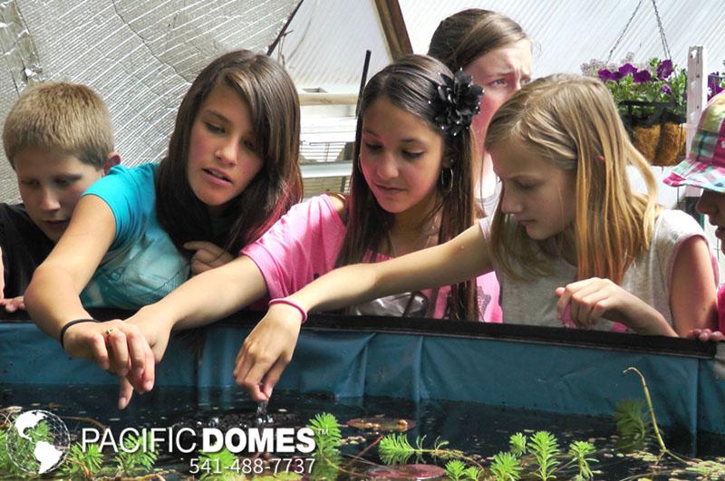 greenhouses, geodesic dome, greenhouse kits