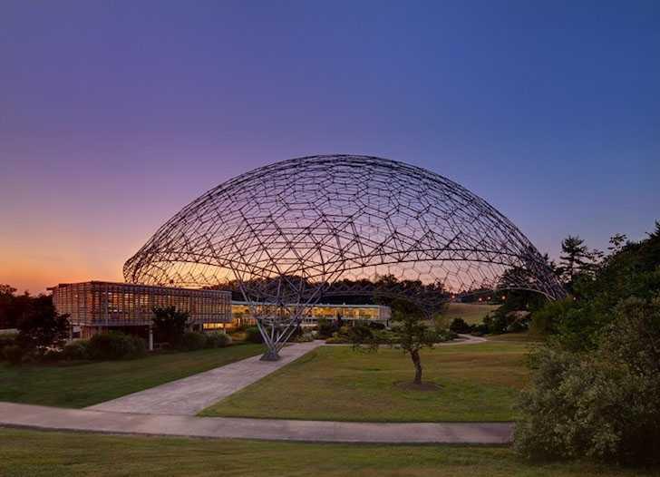 Buckminster Fuller Art