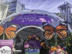 March of Domes Dome