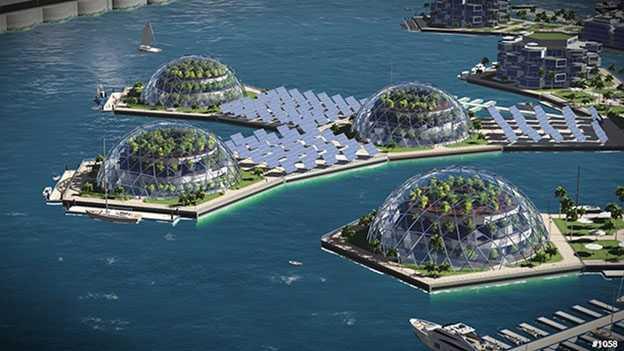 marine ecosystem restoration
