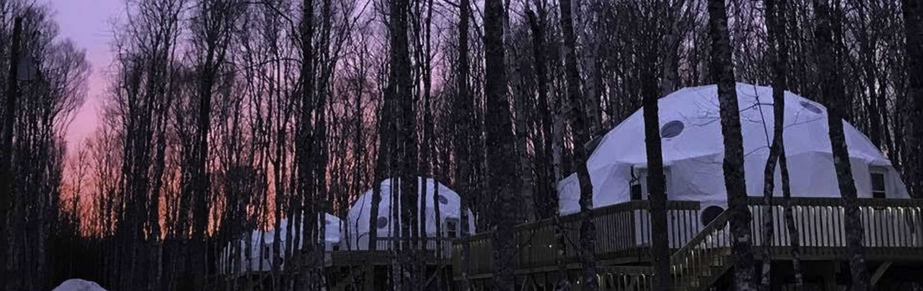 Tree Top Haven Domes