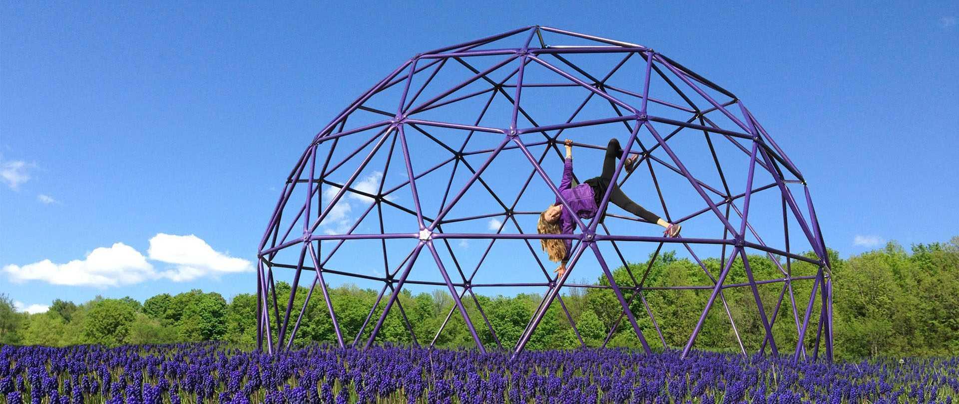 Purple powder coated climbing dome