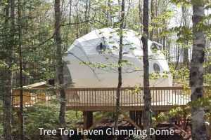 Tree Top Have Glamping Dome