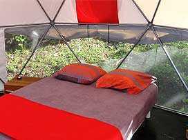 Dome Base Rollups