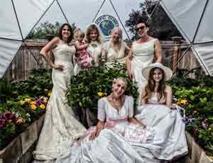 Geodesic Wedding Dome