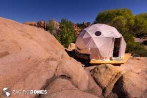 Dome in it's natural habitat!