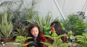 greenhouse dome, classroom dome