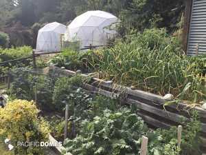 greenhouse dome, greenhouse, grow dome