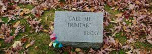 Trimtab Epitaph - Buckminster Fuller