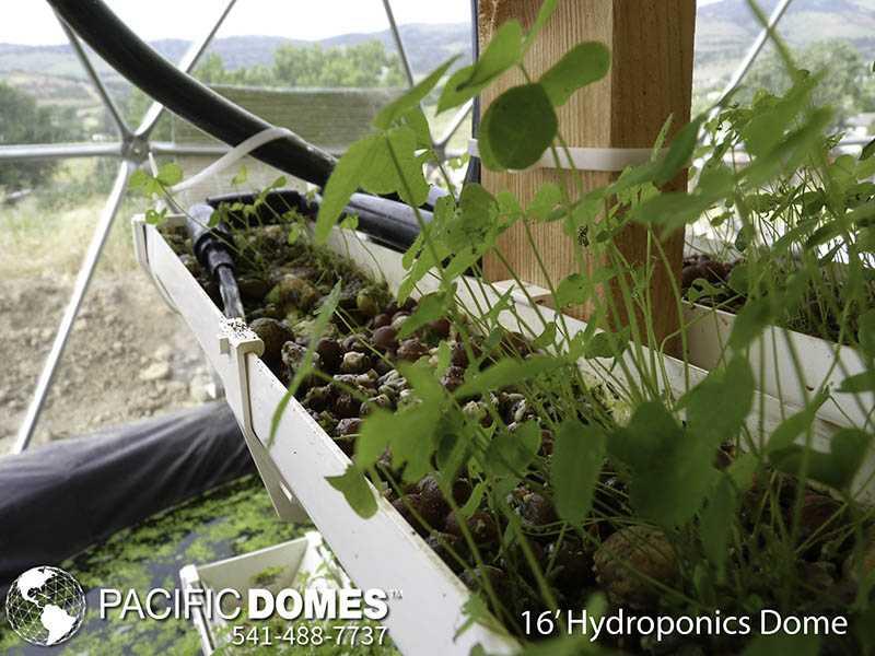 ydroponic Dome-Pacific Domes
