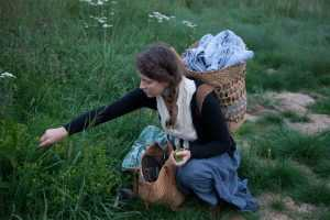 Foraging for wild herbs in Nature