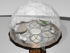 24' dome with round bed & hammock