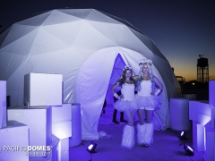 Icon Ice Bar-Pacific Domes