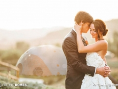 1_wedding-dome-4