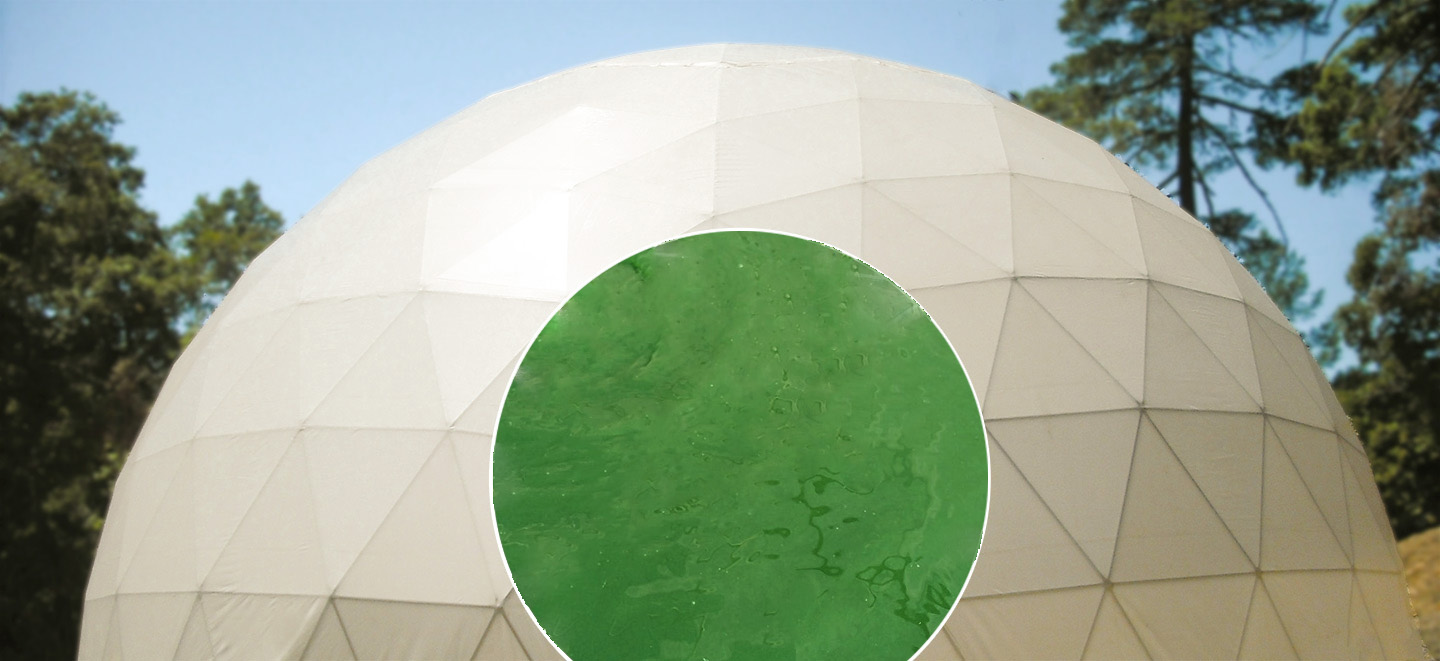 Pacific Domes - Algae Domes