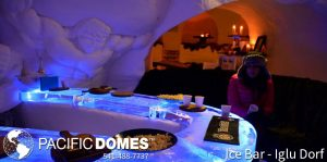 Pacific Domes - Ice Bar Domes