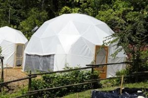 24ft-greenhouse-dome2