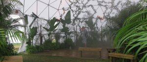 Pacific Domes - Greenhouse Dome