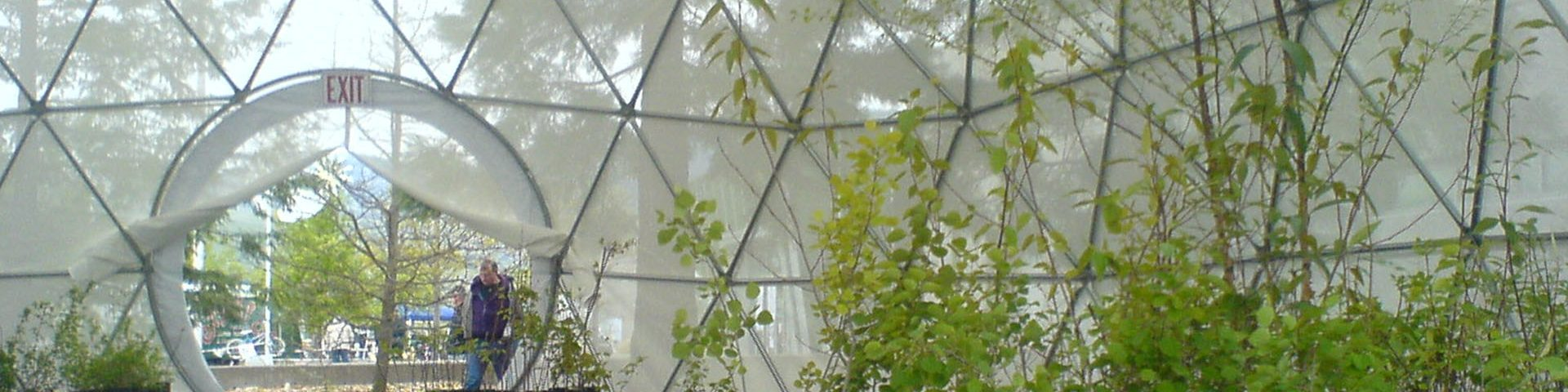 Best Geodesic Greenhouse Domes - Dome Greenhouse Kits for Sale