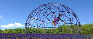 Pacific Domes - Playground Dome