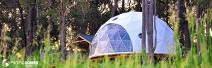 Mile End-Pacific Domes