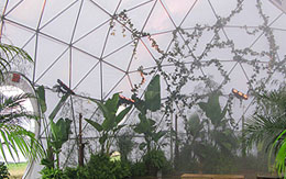 Pacific Domes Greenhouse Dome