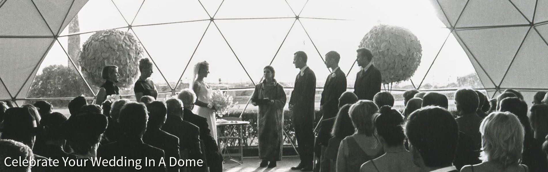 Geodesic Wedding Domes