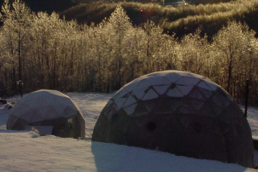 Dwell-shelter-dome-5