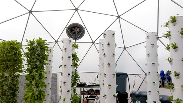 Greenhouse Dome aeroponics food growing system