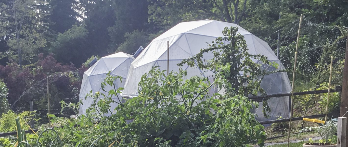 geodesic greenhouse dome, greenhouse dome, grow dome