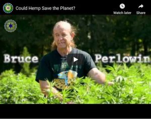 Could Hemp save the planet video