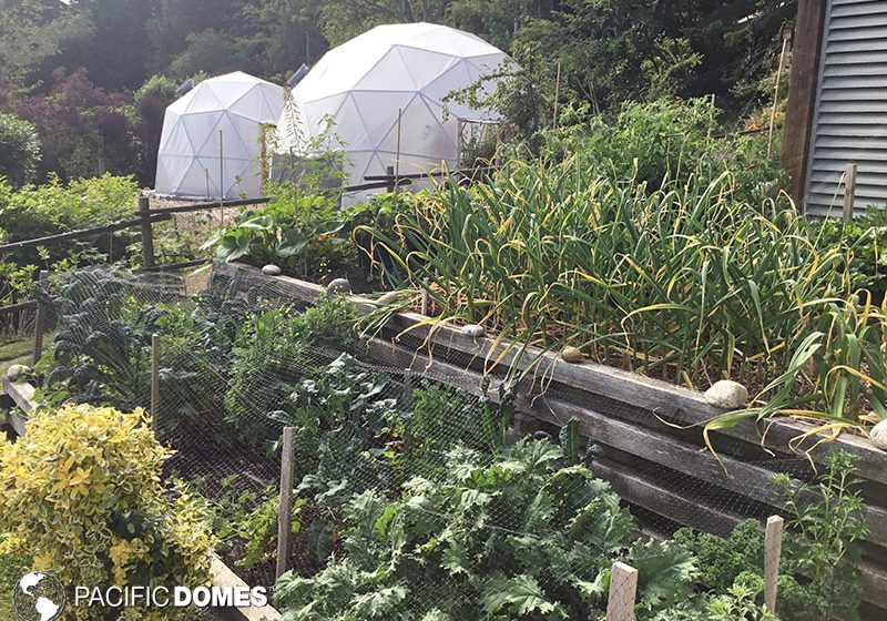 greenhouse dome, greenhouse, grow dome