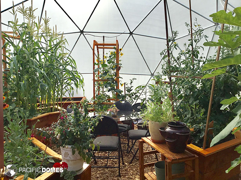 community greenhouse dome, grow dome, green house